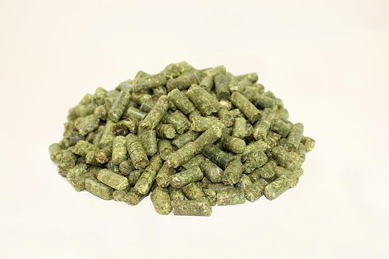 Grascobs, pelletierte Cobs aus Gras (Wiesengras), mit optimaler Struktur, als hochwertige Rohfaser-Quelle und Eiweiß-Futter