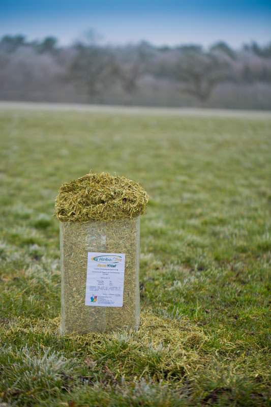 Luzerneheu abgesackt in Kleinballen mit perfekter Struktur und hohem Anteil an Eiweiß
