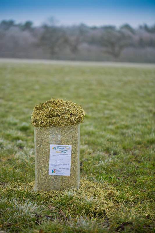 Luzerne-Heu für Ihr Pferd, gesund und Eiweiß-reich, melasse- und getreidefrei