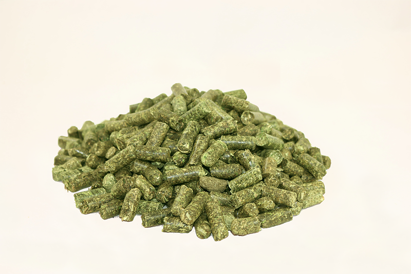 Melassefreies Futter für Ihre Stute – Pellets aus Luzerne, mit viel Struktur und wertvoller Rohfaser