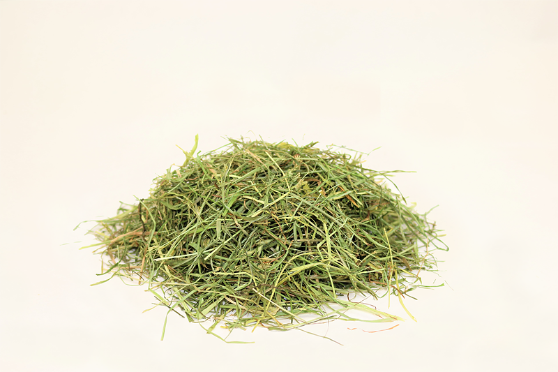 Wiesengras mit viel Beta Carotin