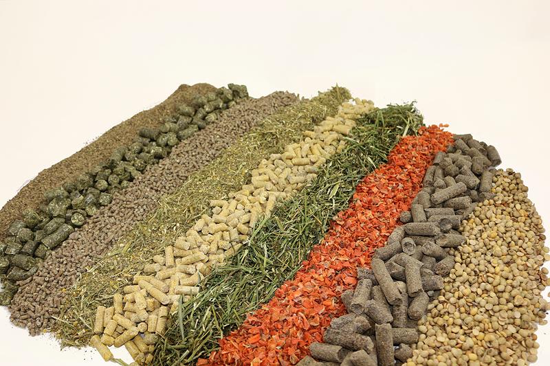 Günstiges Kraftfutter, als Futtervielfalt in Streifen