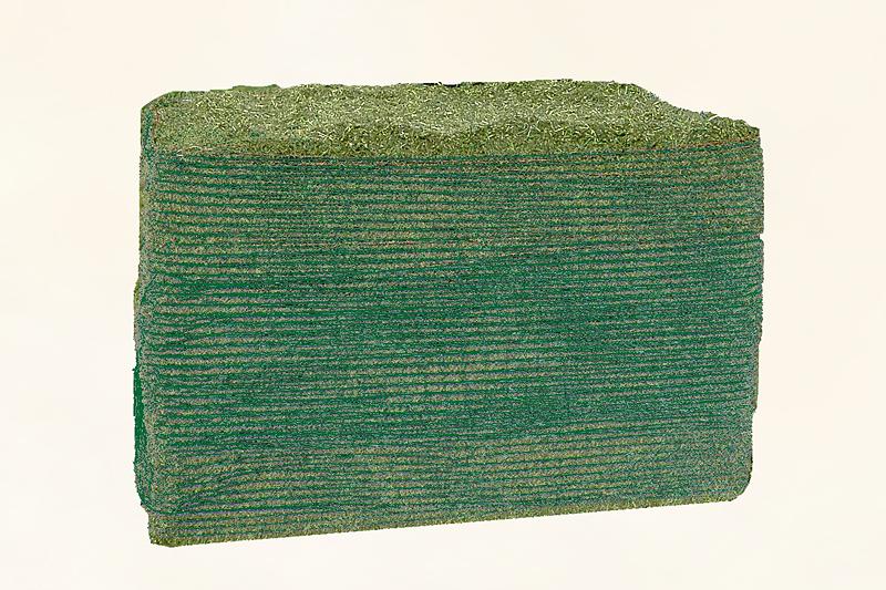 Strukturreiches, heißluftgetrocknetes Luzerneheu (offen und im Ballen)